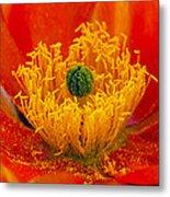 Flower 108 Metal Print