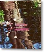 Flower And Lily Pad Metal Print