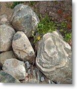 Flower And Rocks Metal Print
