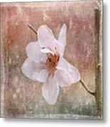 Flower Art - Nature Reminds Us Metal Print