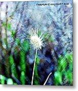 Flower As A  Painting Metal Print