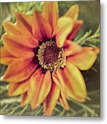Flower Beauty I Metal Print