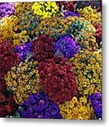 Flower Bed Across The Street From The Grand Palais Off Of Champs Elysees  Metal Print