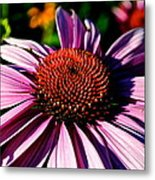 Flower Bed Close Up Metal Print