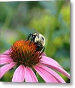 Flower Bumble Bee Metal Print