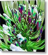 Flower Bunch Bush Sensual Exotic Valentine's Day Gifts Metal Print