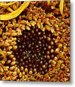 Flower - Daisy - In Other Worlds Metal Print