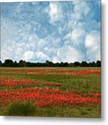 Flower Fields Forever Metal Print