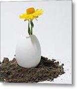 Flower Growing In A Egg Metal Print