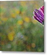 Flower In A Field  Metal Print