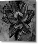Flower In Black And White Metal Print
