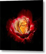 Flower In Red And Gold Metal Print