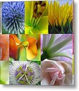 Flower Macro Photography Metal Print