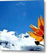 Flower N Hills Metal Print