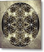 Flower Of Life Silver Metal Print by Filippo B