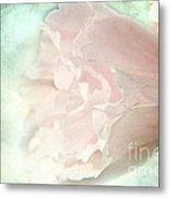 Flower On Old Postard Metal Print