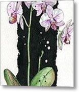 Flower Orchid 02 Elena Yakubovich Metal Print by Elena Yakubovich