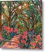 Flower Path Metal Print
