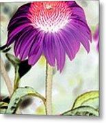Flower Power 1357 Metal Print