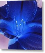 Flower Power 1424 Metal Print