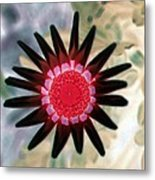 Flower Power 1429 Metal Print