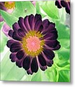 Flower Power 1435 Metal Print