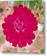 Flower Power 1441 Metal Print
