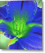 Flower Power 1443 Metal Print