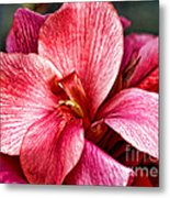 Flower Power In Pink By Diana Sainz Metal Print