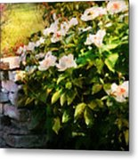 Flower - Rose - By A Wall  Metal Print by Mike Savad