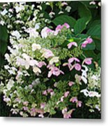 Flower Spray Metal Print