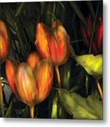 Flower - Tulip -  Orange Irene And Red  Metal Print