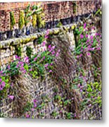 Flower Wall Along The Arno River- Florence Italy Metal Print