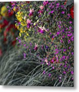 Flower Wall At The Falls Selective Color Metal Print