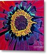 Flowerburst Metal Print