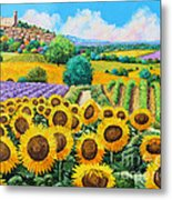 Flowered Garden Metal Print by Jean-Marc Janiaczyk