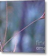 Flowering Moss Metal Print