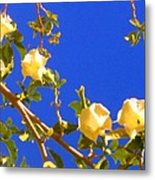 Flowering Tree 1 Metal Print