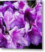 Flowers 2078 Embossed Metal Print