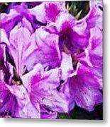 Flowers 2078 Neo Metal Print