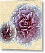 Flowers 7993 Metal Print