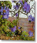 Flowers Against The Wall Metal Print