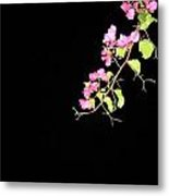Flowers And Darkness Metal Print