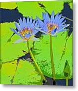 Flowers And Lily Pads Metal Print