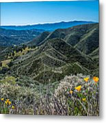 Flowers and Mountains Metal Print