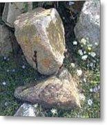 Flowers And Rocks Metal Print