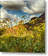Flowers Are Food For The Soul  Metal Print