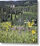 Flowers At Crested Butte Metal Print