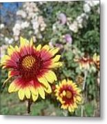 Flowers At The Farm Metal Print