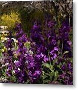 Flowers Dallas Arboretum V18 Metal Print